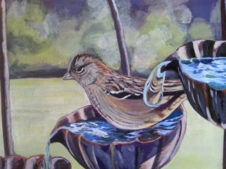Golden Crowned Sparrow painting