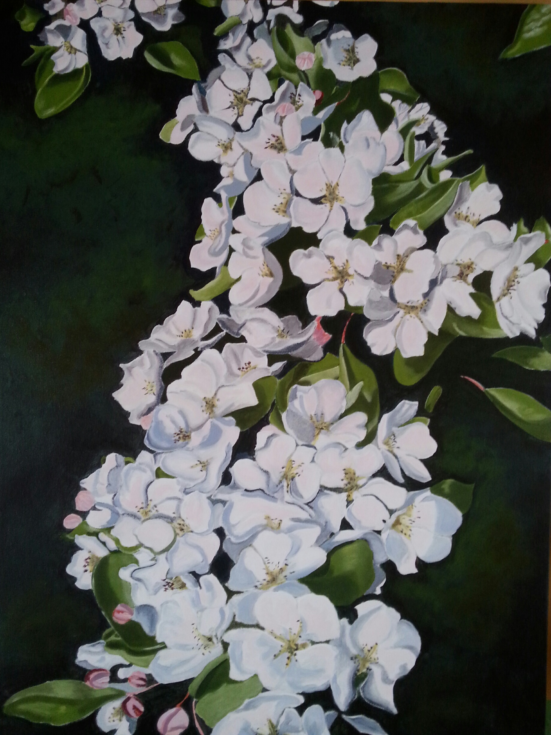 pear blossom final